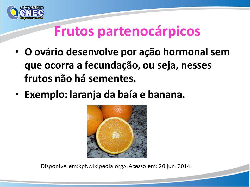 Frutos partenocárpicos O ovário desenvolve por ação hormonal sem que ocorra a fecundação, ou seja, nesses frutos não há sementes. Exemplo: laranja da