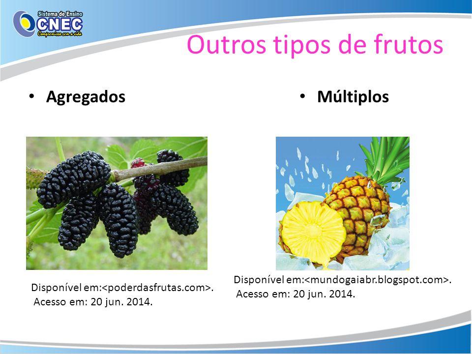 Outros tipos de frutos Agregados Múltiplos Disponível em:. Acesso em: 20 jun. 2014. Disponível em:. Acesso em: 20 jun. 2014.
