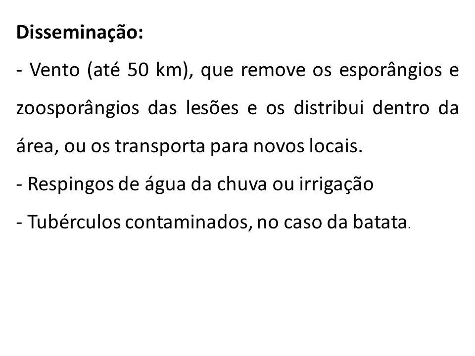 Disseminação: - Vento (até 50 km), que remove os esporângios e zoosporângios das lesões e os distribui dentro da área, ou os transporta para novos loc