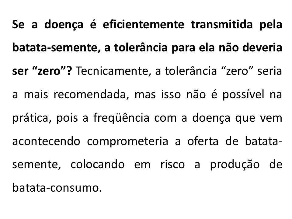 """Se a doença é eficientemente transmitida pela batata-semente, a tolerância para ela não deveria ser """"zero""""? Tecnicamente, a tolerância """"zero"""" seria a"""