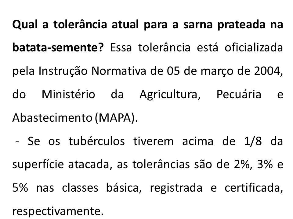 Qual a tolerância atual para a sarna prateada na batata-semente? Essa tolerância está oficializada pela Instrução Normativa de 05 de março de 2004, do
