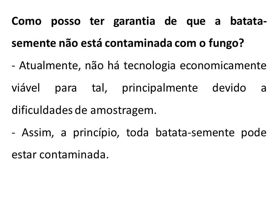 Como posso ter garantia de que a batata- semente não está contaminada com o fungo? - Atualmente, não há tecnologia economicamente viável para tal, pri