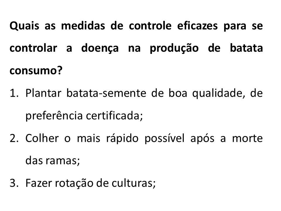 Quais as medidas de controle eficazes para se controlar a doença na produção de batata consumo? 1.Plantar batata-semente de boa qualidade, de preferên