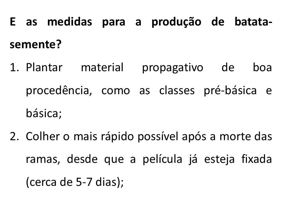 E as medidas para a produção de batata- semente? 1.Plantar material propagativo de boa procedência, como as classes pré-básica e básica; 2.Colher o ma