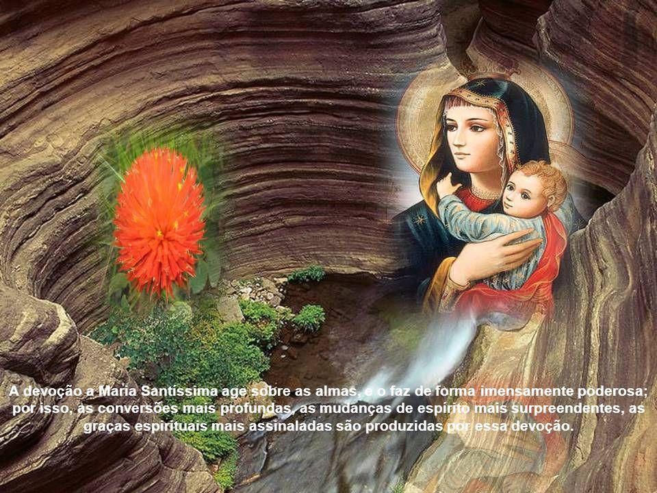 Onde há devoção a Maria, tudo floresce; extinta essa devoção, tudo míngua; restaurada novamente, tudo volta a florescer. A razão disso é profunda e te