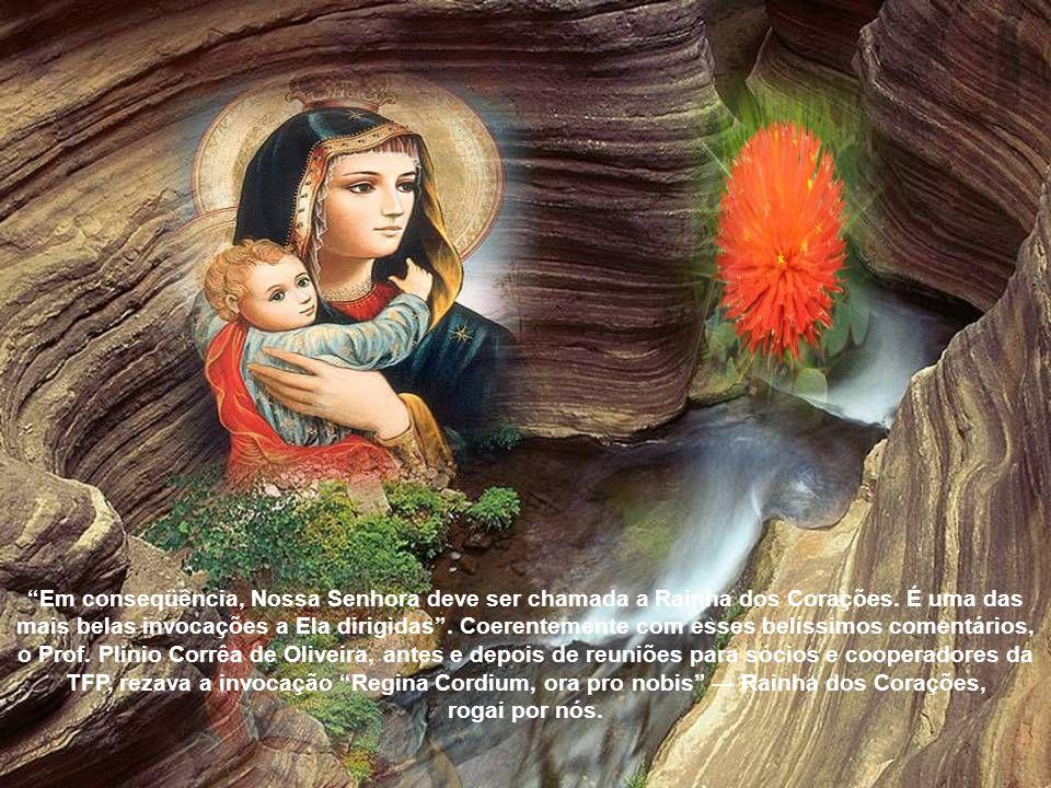A devoção a Maria Santíssima age sobre as almas, e o faz de forma imensamente poderosa; por isso, as conversões mais profundas, as mudanças de espírito mais surpreendentes, as graças espirituais mais assinaladas são produzidas por essa devoção.