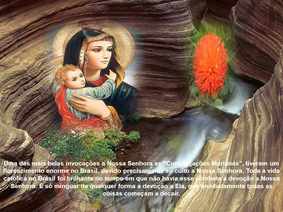 Nossa Senhora revelou então a São Domingos de Gusmão uma devoção a Ela, mediante a qual os hereges seriam subjugados. E, de fato, depois de difundida