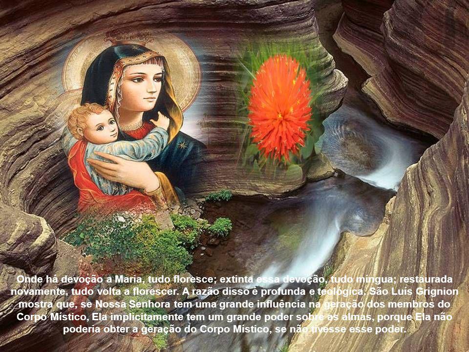 """Uma das mais belas invocações a Nossa Senhora as """"Congregações Marianas"""", tiveram um florescimento enorme no Brasil, devido precisamente ao culto a No"""