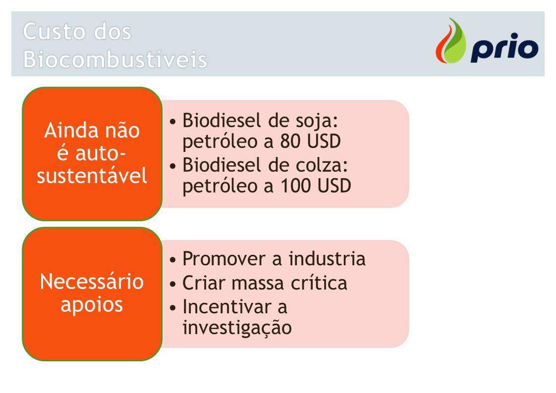 Biodiesel de soja: petróleo a 80 USD Biodiesel de colza: petróleo a 100 USD Ainda não é auto- sustentável Promover a industria Criar massa crítica Inc