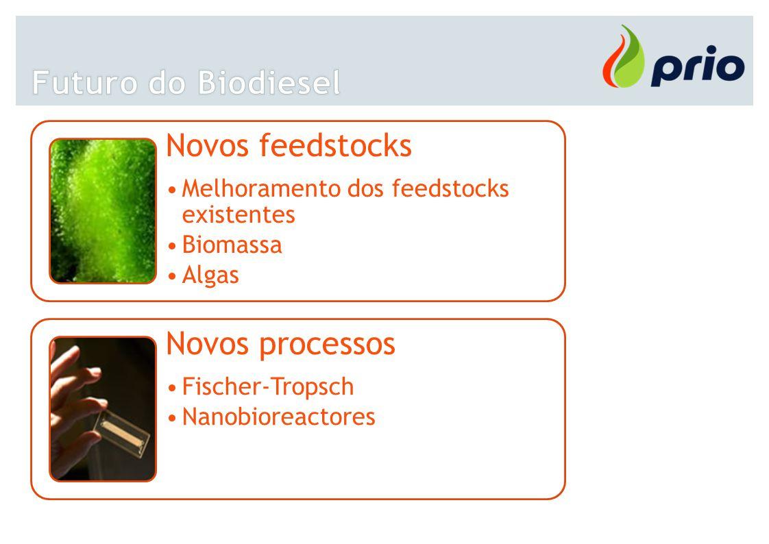 Novos feedstocks Melhoramento dos feedstocks existentes Biomassa Algas Novos processos Fischer-Tropsch Nanobioreactores