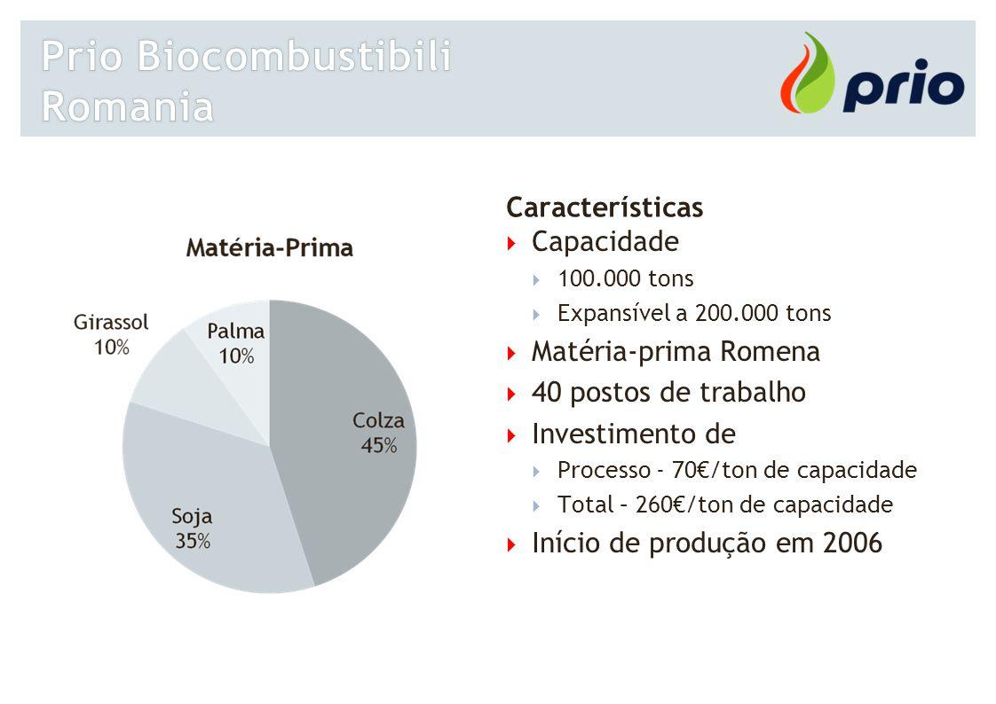 Características  Capacidade  100.000 tons  Expansível a 200.000 tons  Matéria-prima Romena  40 postos de trabalho  Investimento de  Processo -