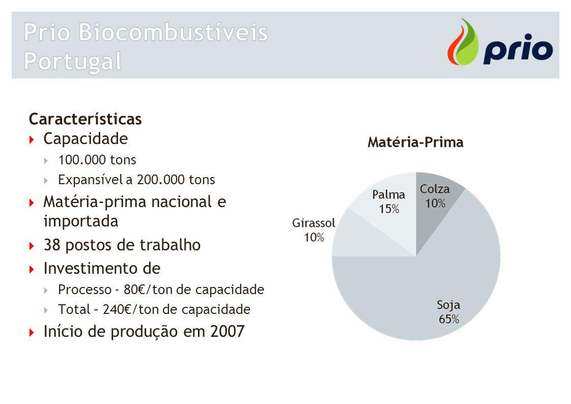 Características  Capacidade  100.000 tons  Expansível a 200.000 tons  Matéria-prima nacional e importada  38 postos de trabalho  Investimento de