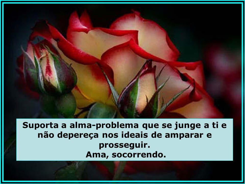 O Espírito é a vida, e enquanto o Amor não lenifica as dores e não lima as arestas das dificuldades, o problema prossegue inalterado. Arrima-te ao Amo