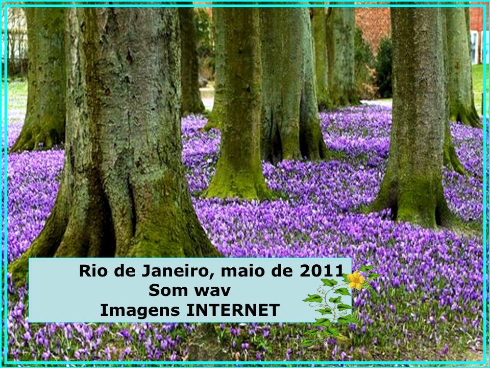 Ditado pelo Espírito Joanna de Ângelis ao médium Divaldo Pereira Franco Do livro ALERTA - Editora LEAL PAZ!