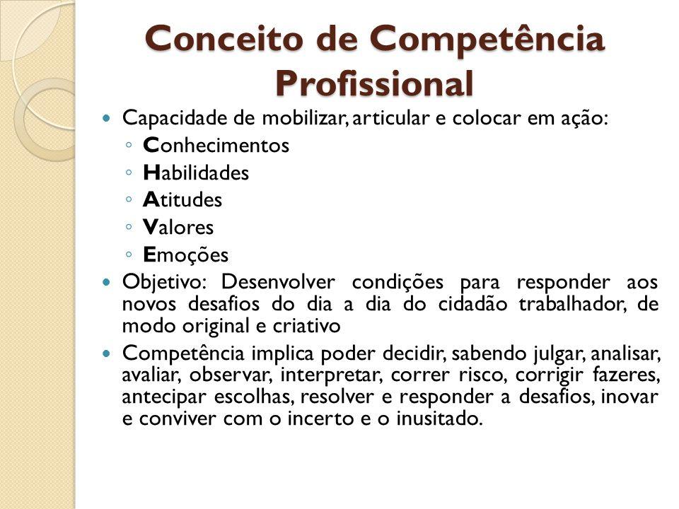 Conceito de Competência Profissional Capacidade de mobilizar, articular e colocar em ação: ◦ Conhecimentos ◦ Habilidades ◦ Atitudes ◦ Valores ◦ Emoçõe