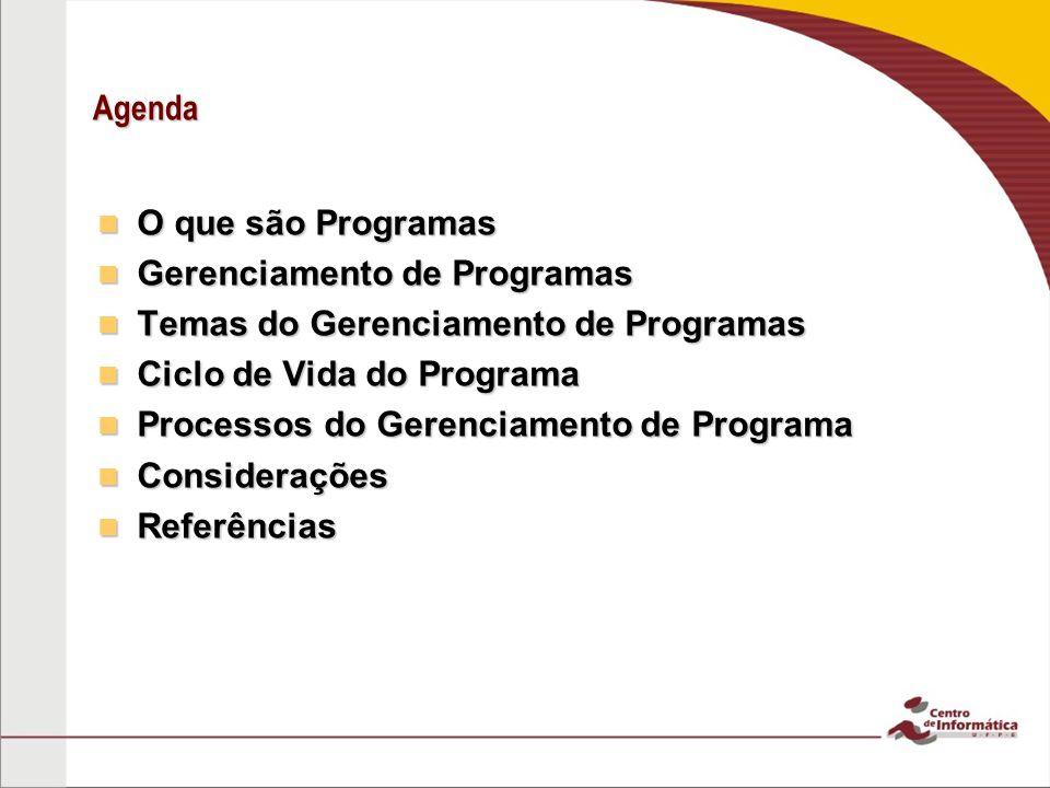 Agenda O que são Programas O que são Programas Gerenciamento de Programas Gerenciamento de Programas Temas do Gerenciamento de Programas Temas do Gere
