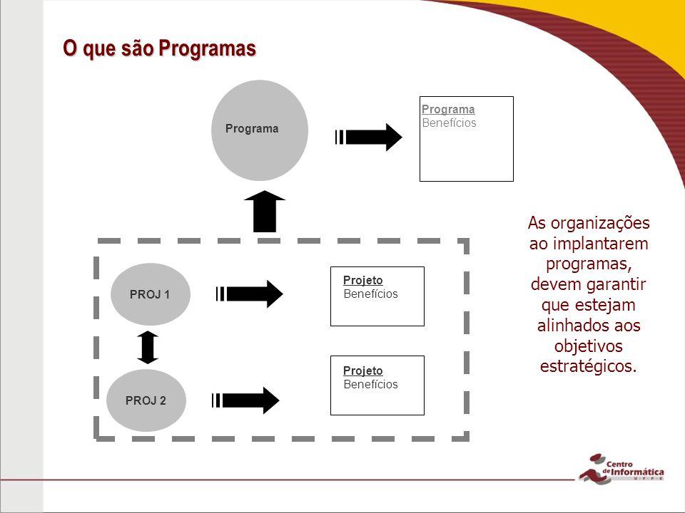 O que são Programas PROJ 1 PROJ 2 Programa Benefícios Projeto Benefícios Projeto Benefícios As organizações ao implantarem programas, devem garantir q