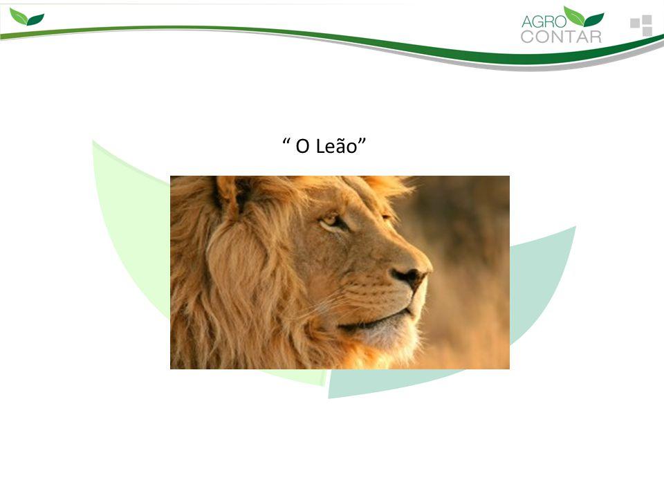 """"""" O Leão"""""""