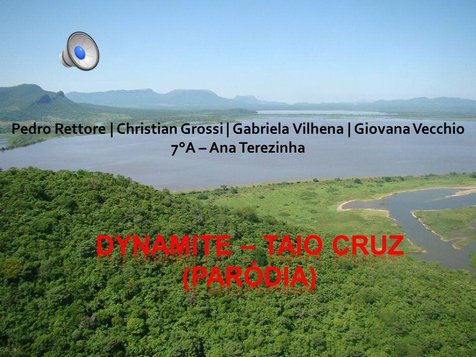 Pedro Rettore | Christian Grossi | Gabriela Vilhena | Giovana Vecchio 7°A – Ana Terezinha