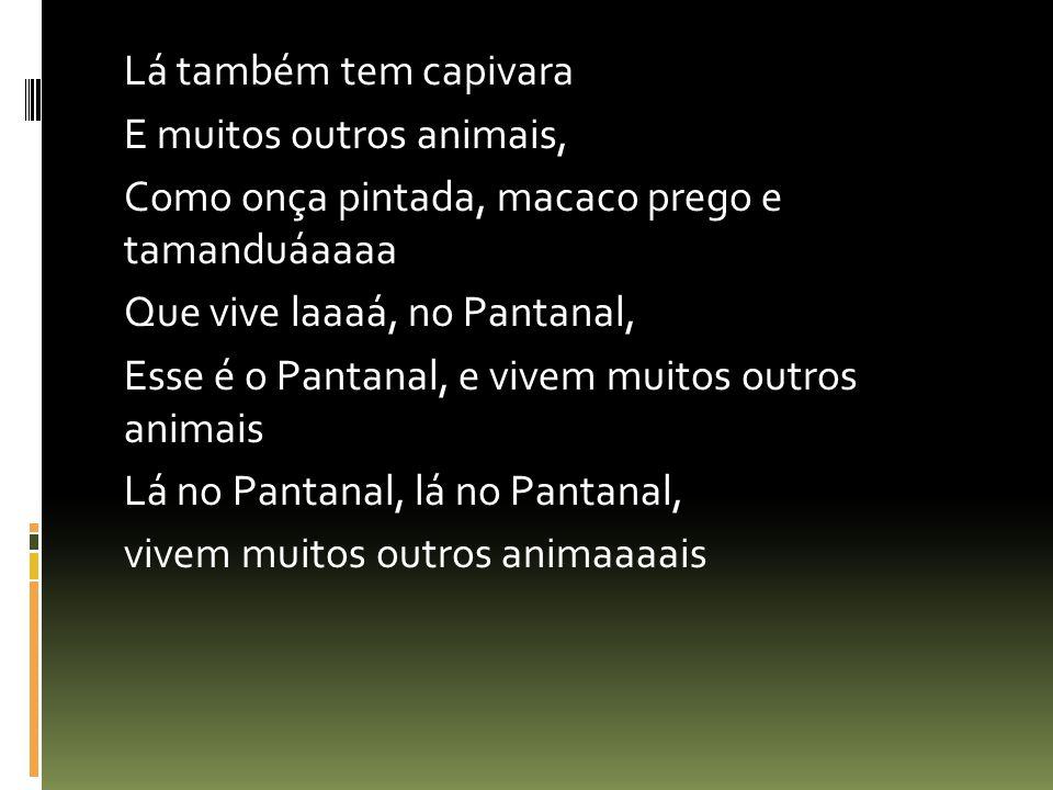 Lá também tem capivara E muitos outros animais, Como onça pintada, macaco prego e tamanduáaaaa Que vive laaaá, no Pantanal, Esse é o Pantanal, e vivem muitos outros animais Lá no Pantanal, lá no Pantanal, vivem muitos outros animaaaais