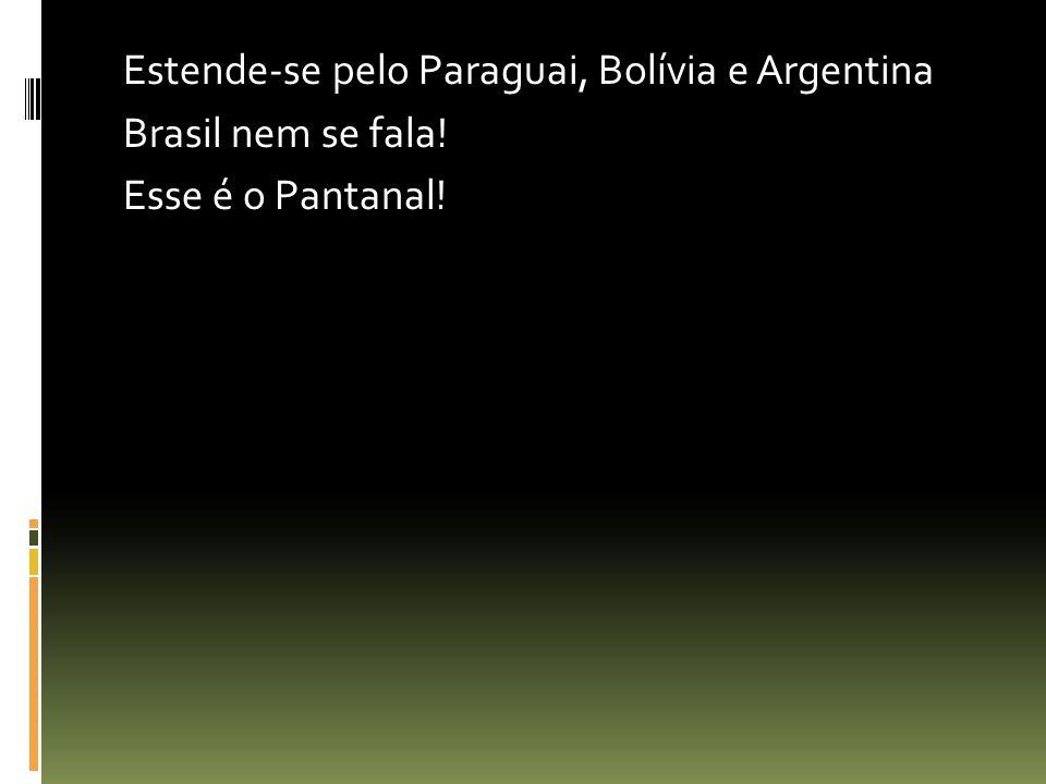 Estende-se pelo Paraguai, Bolívia e Argentina Brasil nem se fala! Esse é o Pantanal!