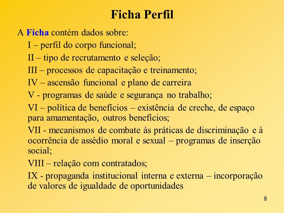8 Ficha Perfil A Ficha contém dados sobre: I – perfil do corpo funcional; II – tipo de recrutamento e seleção; III – processos de capacitação e treina
