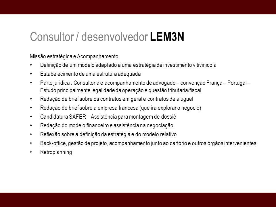 Consultor / desenvolvedor LEM3N A contratação é para que assegure a missão de assistência em estratégia financeira e pilote a implementação junto aos profissionais e consultores de serviços internos do grupo.