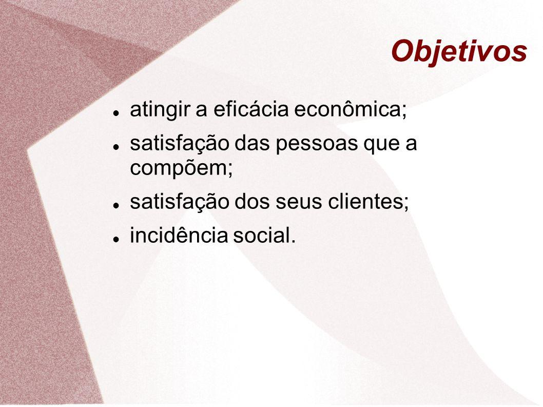 Objetivos atingir a eficácia econômica; satisfação das pessoas que a compõem; satisfação dos seus clientes; incidência social.