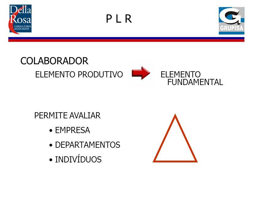 COLABORADOR ELEMENTO PRODUTIVO ELEMENTO FUNDAMENTAL PERMITE AVALIAR EMPRESA DEPARTAMENTOS INDIVÍDUOS