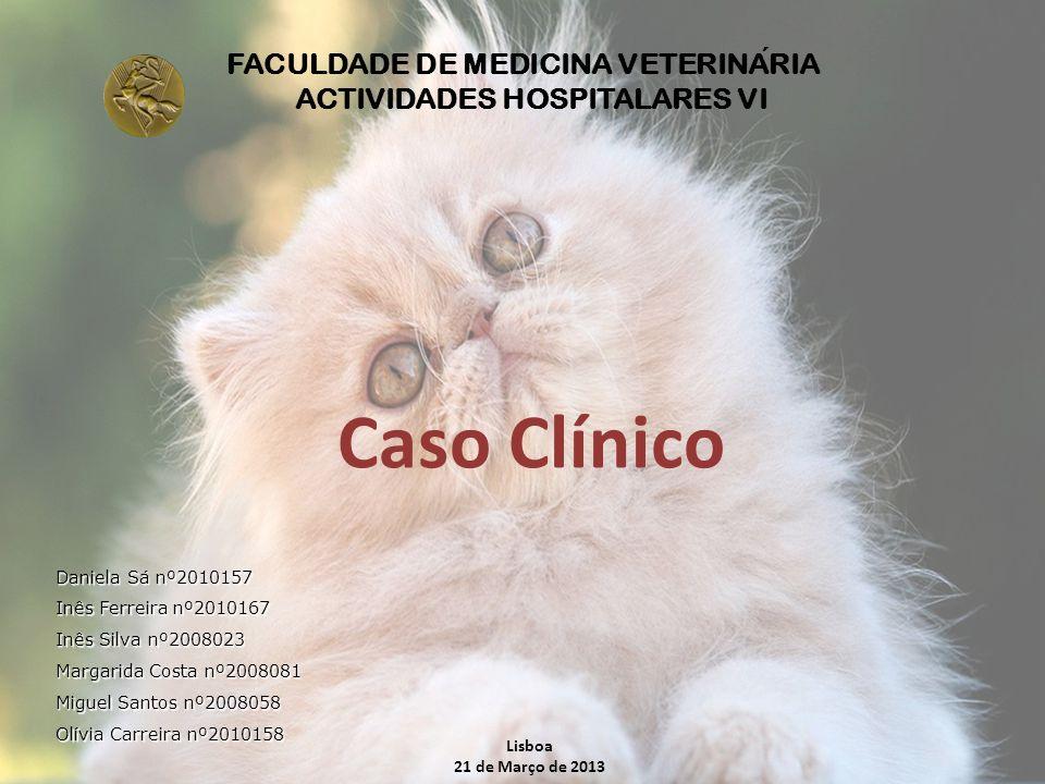 FACULDADE DE MEDICINA VETERINARIA ACTIVIDADES HOSPITALARES VI Caso Clínico Lisboa 21 de Março de 2013 Daniela Sá nº2010157 Inês Ferreira nº2010167 Inê