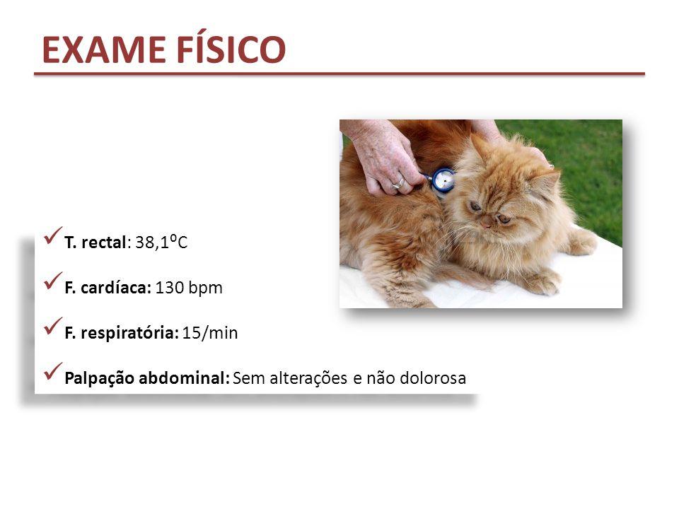 EXAME FÍSICO T. rectal: 38,1⁰C F. cardíaca: 130 bpm F. respiratória: 15/min Palpação abdominal: Sem alterações e não dolorosa T. rectal: 38,1⁰C F. car