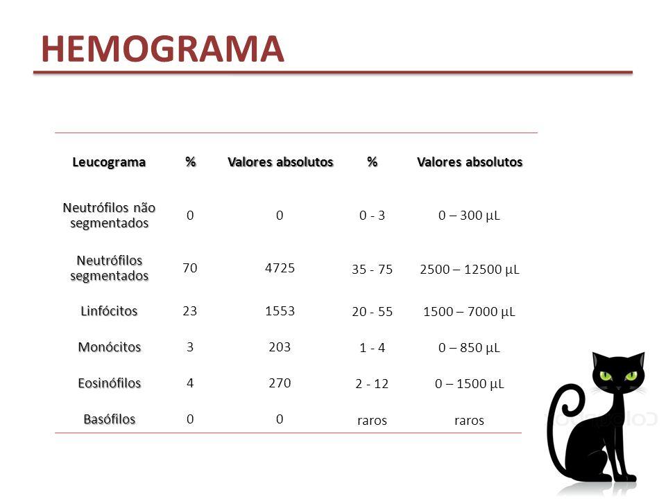 Leucograma% Valores absolutos % Neutrófilos não segmentados 000 - 30 – 300 µL Neutrófilos segmentados 704725 35 - 752500 – 12500 µL Linfócitos231553 2