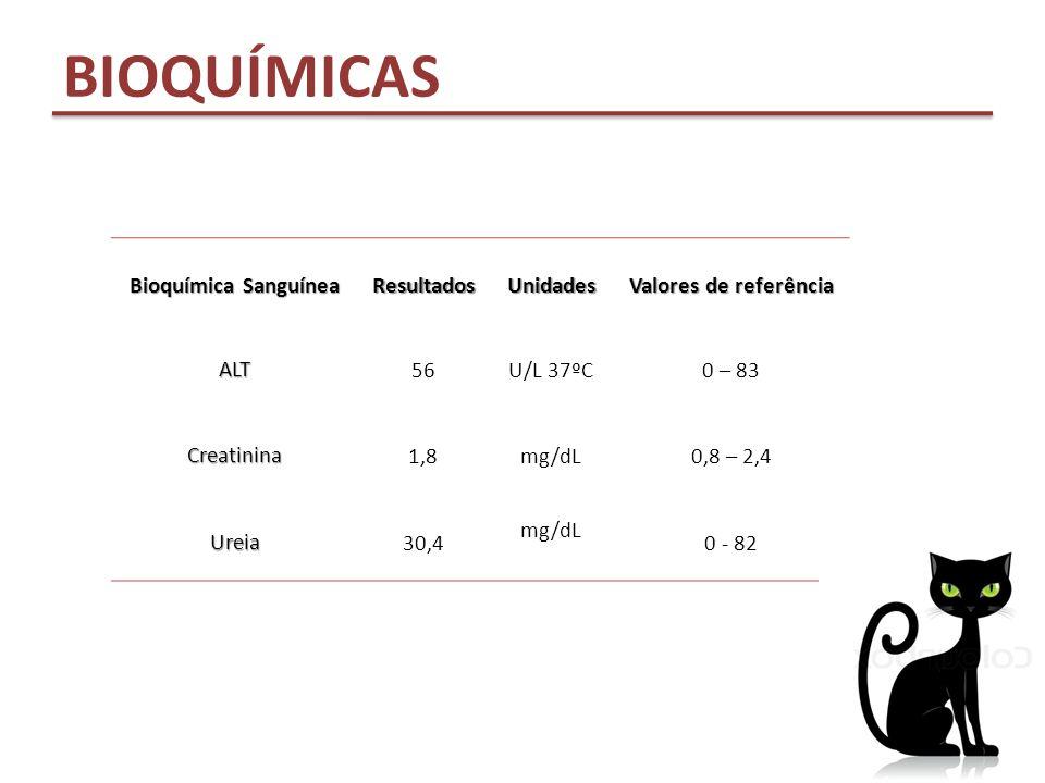 BIOQUÍMICAS Bioquímica Sanguínea ResultadosUnidades Valores de referência ALT 56U/L 37ºC0 – 83 Creatinina 1,8mg/dL0,8 – 2,4 Ureia 30,4 mg/dL 0 - 82