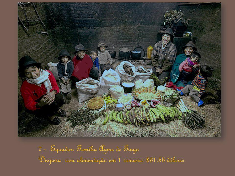 6 - Egito: Família Ahmed do Cairo Despesa com alimentação em 1 semana: 387.85 Egyptian Pounds / $68.53 dólares