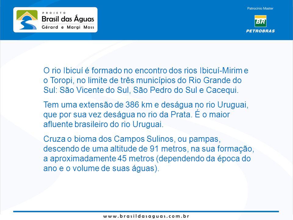 O rio Ibicuí é formado no encontro dos rios Ibicuí-Mirim e o Toropi, no limite de três municípios do Rio Grande do Sul: São Vicente do Sul, São Pedro