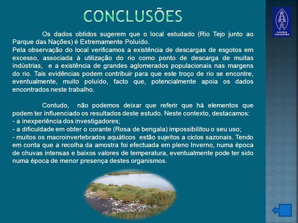 Os dados obtidos sugerem que o local estudado (Rio Tejo junto ao Parque das Nações) é Extremamente Poluído.