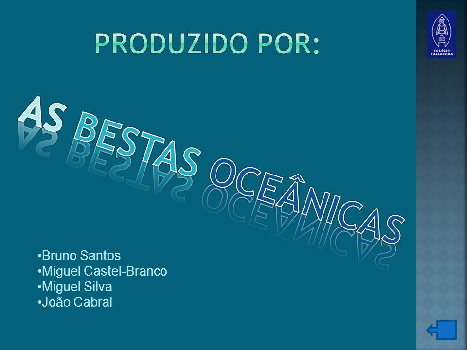 Bruno Santos Miguel Castel-Branco Miguel Silva João Cabral