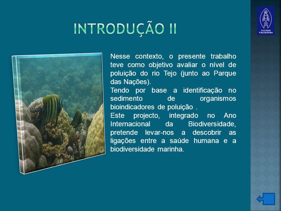 Nesse contexto, o presente trabalho teve como objetivo avaliar o nível de poluição do rio Tejo (junto ao Parque das Nações).