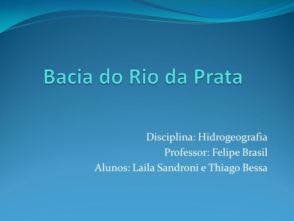 Disciplina: Hidrogeografia Professor: Felipe Brasil Alunos: Laila Sandroni e Thiago Bessa