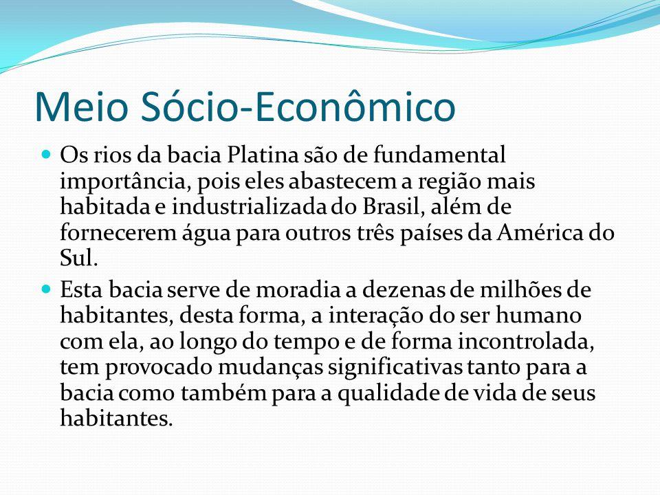 Meio Sócio-Econômico Os rios da bacia Platina são de fundamental importância, pois eles abastecem a região mais habitada e industrializada do Brasil,