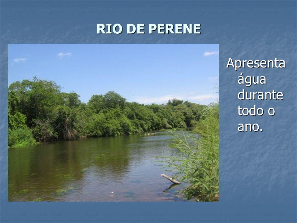 RIO DE PERENE Apresenta água durante todo o ano.