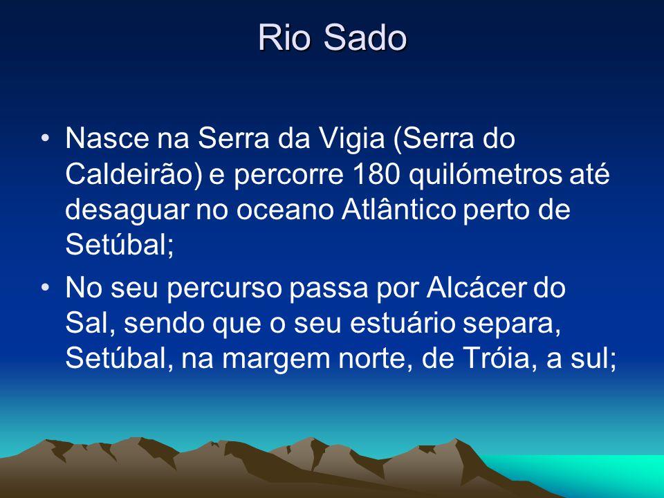Rio Sado É dos poucos rios que faz o seu percurso ao contrário (De Sul para Norte); Desagua perto de Setúbal; No estuário do Sado habita uma população de golfinhos (roaz-corvineiro), que tem resistido à invasão do seu habitat pelo homem;