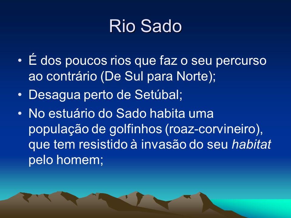 Rio Sado É dos poucos rios que faz o seu percurso ao contrário (De Sul para Norte); Desagua perto de Setúbal; No estuário do Sado habita uma população
