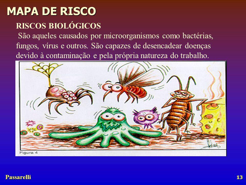 Passarelli MAPA DE RISCO 13 RISCOS BIOLÓGICOS São aqueles causados por microorganismos como bactérias, fungos, vírus e outros.