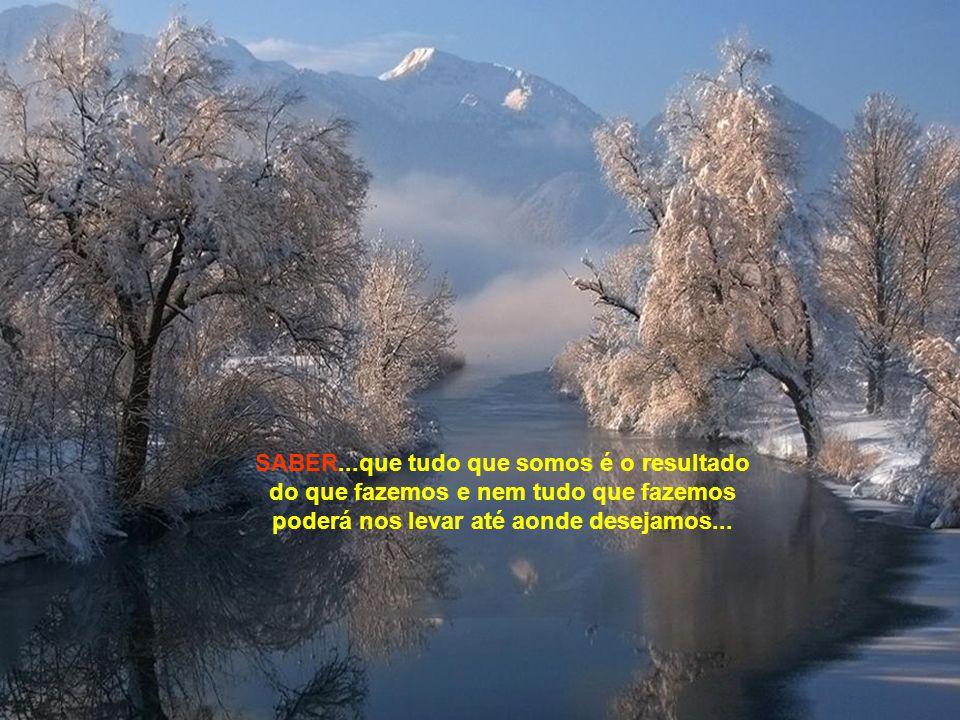 ... SABER...que a natureza faz parte da vida e que a nossa vida depende apenas da nossa própria natureza...