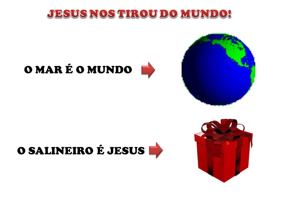 O MAR É O MUNDO O SALINEIRO É JESUS