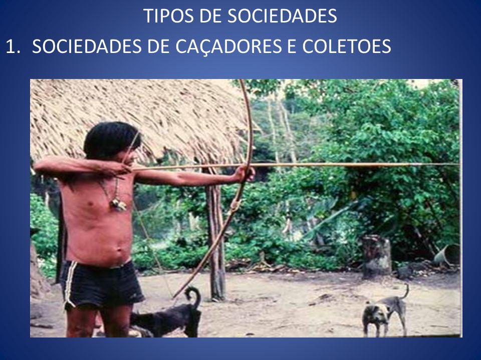 TIPOS DE SOCIEDADES 1.SOCIEDADES DE CAÇADORES E COLETOES