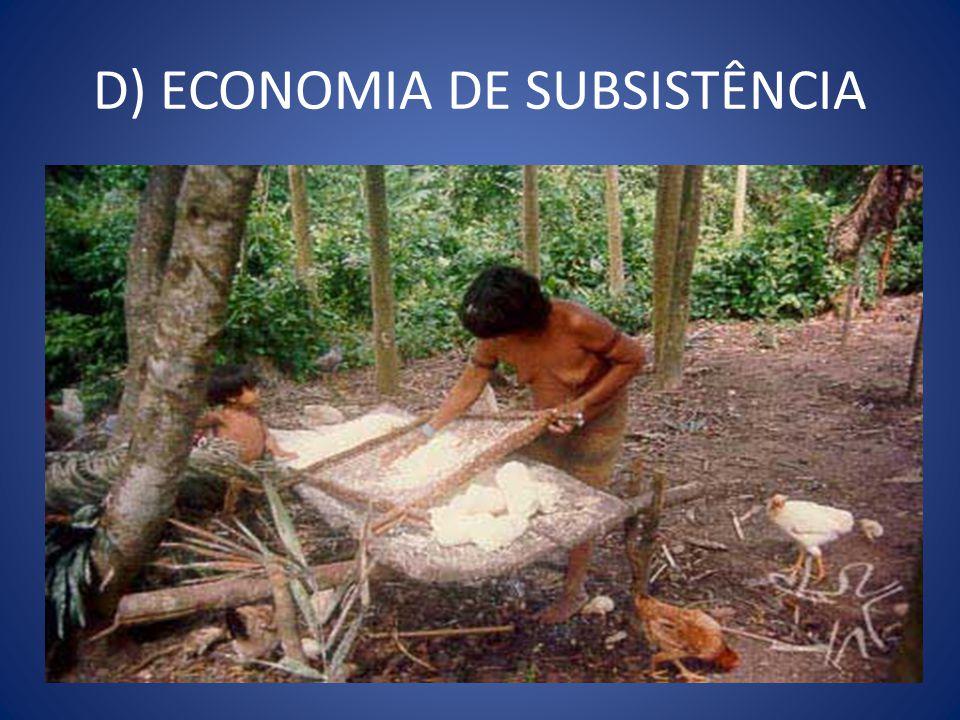 D) ECONOMIA DE SUBSISTÊNCIA