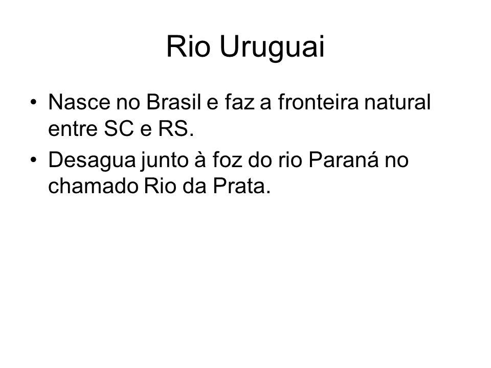 Rio Uruguai Nasce no Brasil e faz a fronteira natural entre SC e RS. Desagua junto à foz do rio Paraná no chamado Rio da Prata.