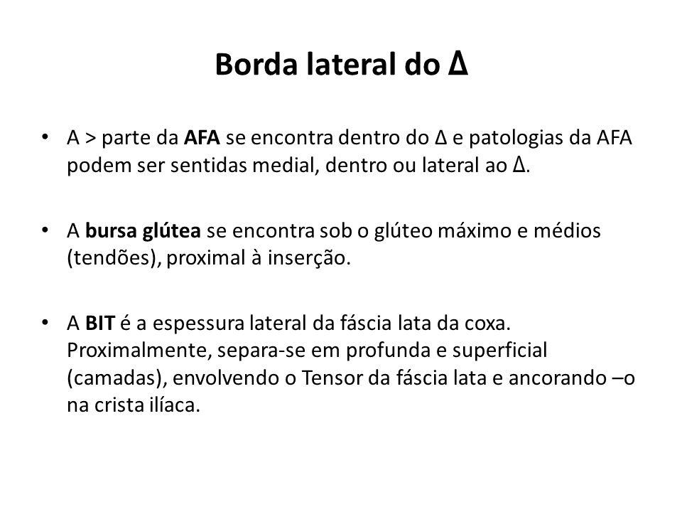 Borda lateral do Δ A > parte da AFA se encontra dentro do Δ e patologias da AFA podem ser sentidas medial, dentro ou lateral ao Δ.